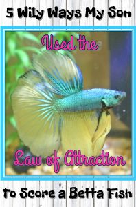 My son wanted a fish. Here are five ways he used the Law of Attraction against me to get it!